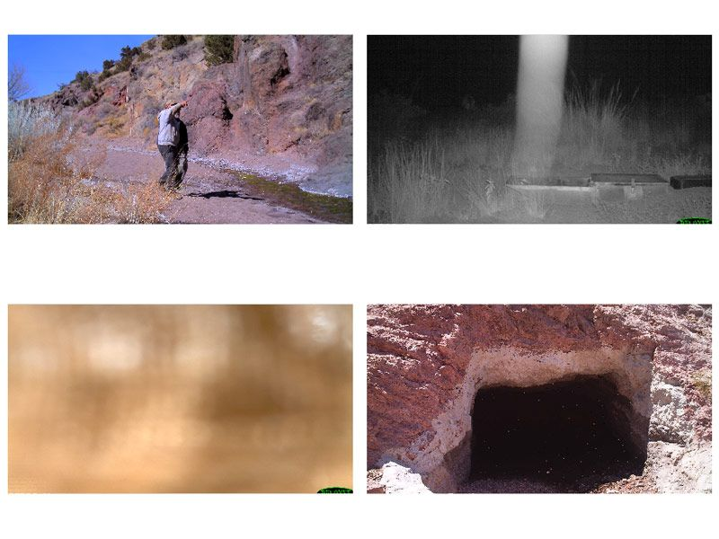 "Figure 6. Images triggered by nonwildlife activity. Top:  A human (left) and a ""ghost"" (right). Bottom: ""unidentified"" images."