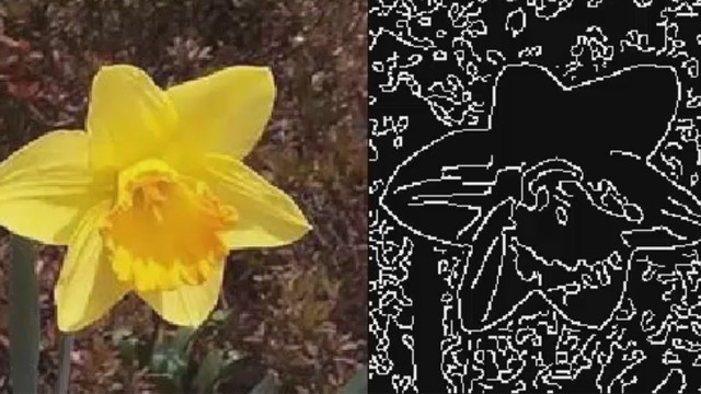 Edge detection can be a versatile and powerful image processing tool. See the type of problems edge detection can help solve and view a detailed example in MATLAB